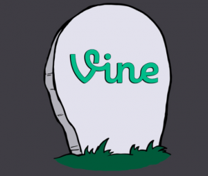 Goodbye Vine