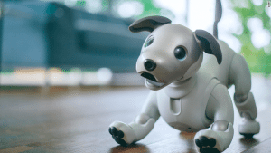 The newest version of Aibo the robot dog.